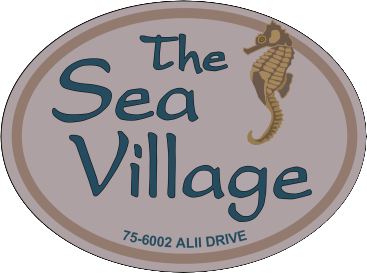 The Sea Village